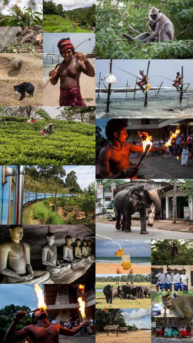 Sri Lanka Collage